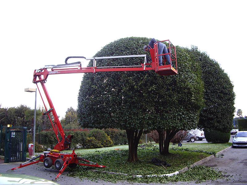 Entreprise de jardinage proximit de mandelieu for Entreprise entretien jardin 974